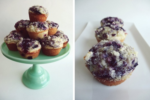 the perfect blueberry muffin
